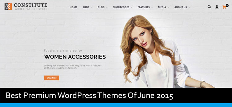 33 Best Premium WordPress Themes Of June 2015