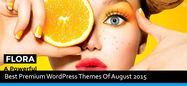 22 Best Premium WordPress Themes Of August 2015