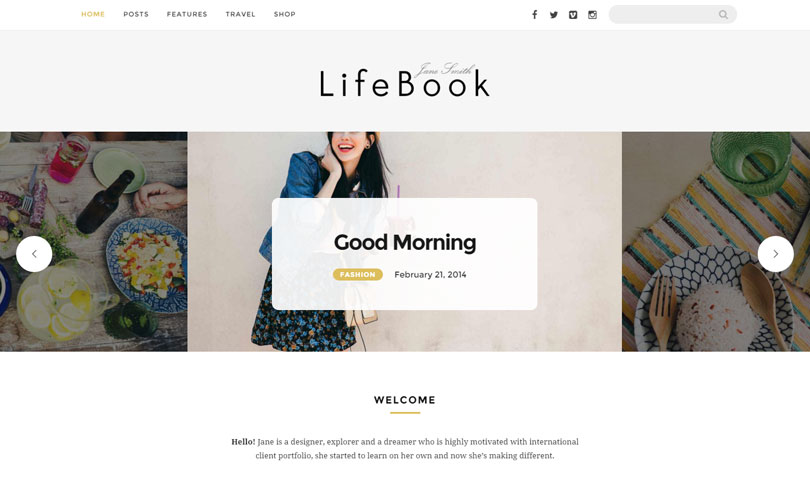 Best Premium WordPress Themes Of January 2017