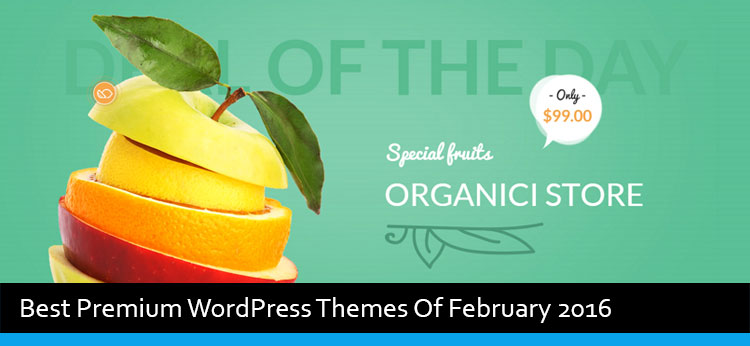 18 Best Premium WordPress Themes Of February 2016