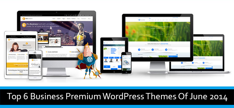 Top 6 Business Premium WordPress Themes Of June 2014