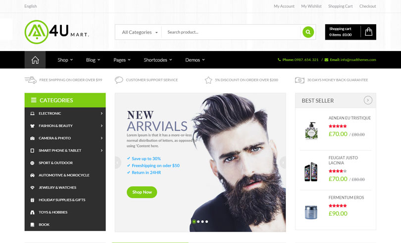 33 Best Premium WordPress Themes Of June 2015 - Modern WP Themes