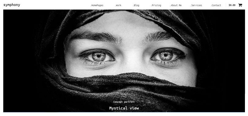 Best wordpress photography themes of 2015