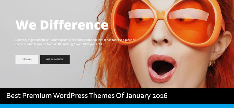 14 Best Premium WordPress Themes Of January 2016