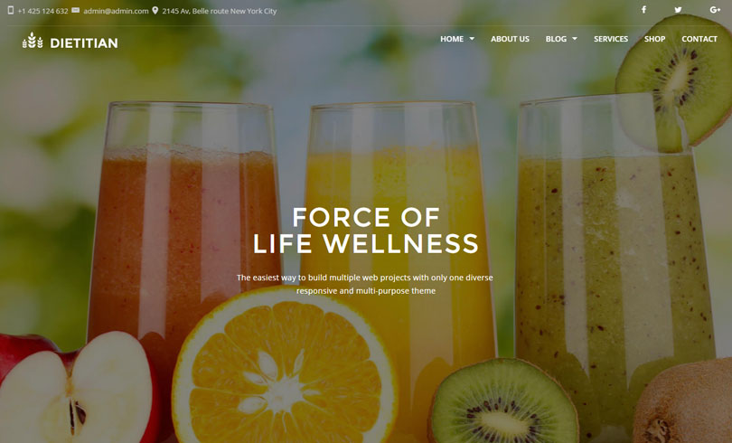 Best Premium WordPress Themes Of April 2016