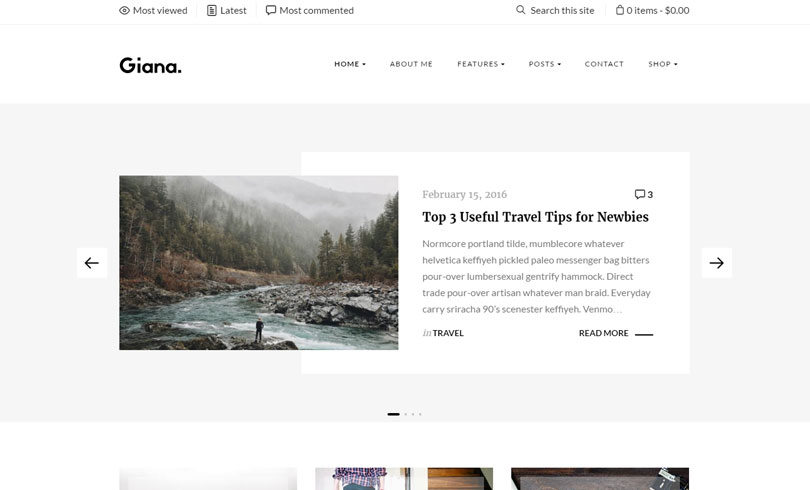 Best WordPress Blog Themes Of 2017